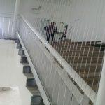 Vì sao cần làm lưới an toàn cho cầu thang?